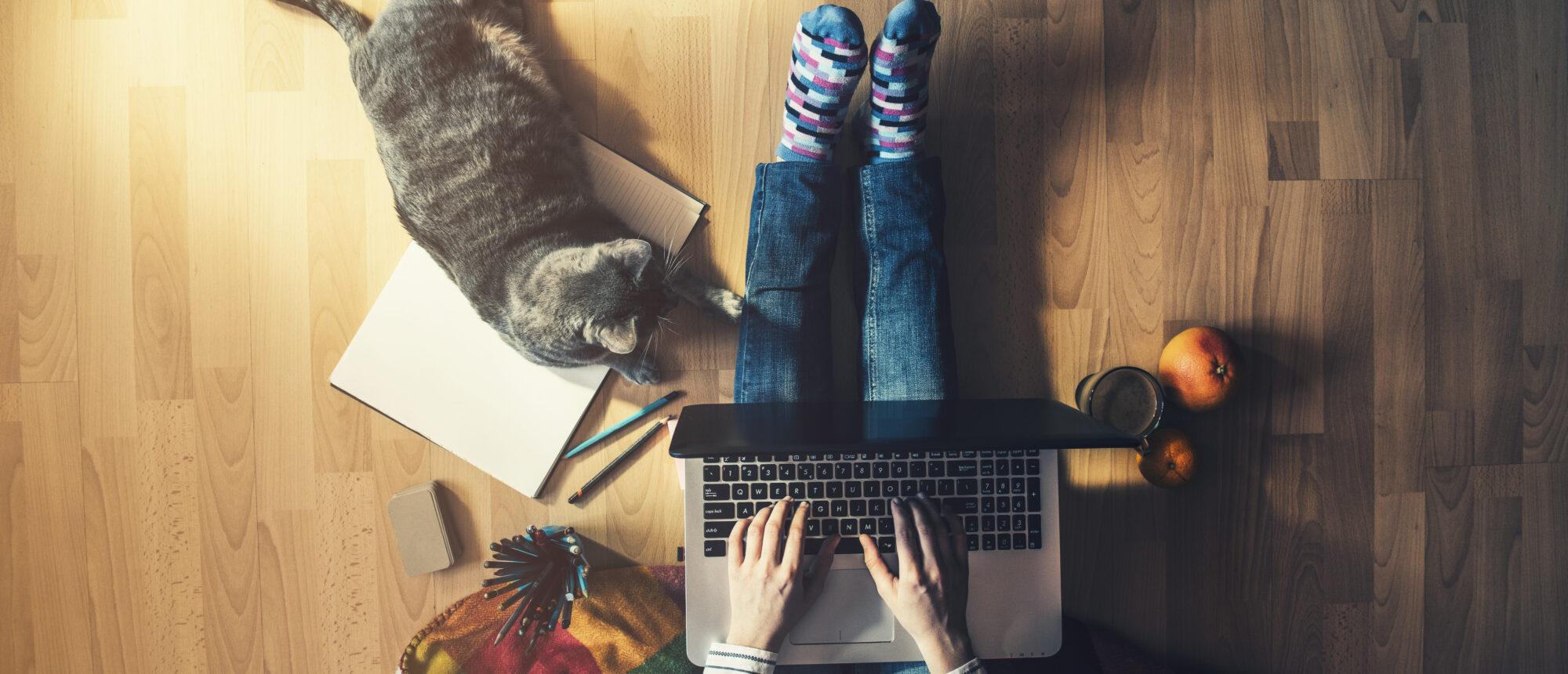 vanthof Snel Online - zelf je woning verkopen